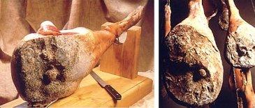 Bigorre ham (France)